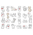 cats domestic pets funny hand drawn animals vector image