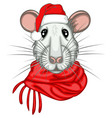 christmas rat vector image vector image