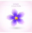 Colorful Flower Isolated on White vector image vector image