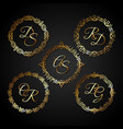 luxury gold circle frame vector image