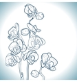 orchid isolated on white vector image vector image