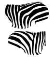 zebra stripes vector image vector image