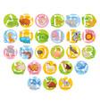 cute animal alphabet set vector image