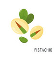 cartoon pistachio isolated on white background vector image