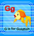 flashcard letter g is for goldfish vector image vector image