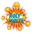 Holy Moly vector image