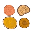 Tree wood slices set vector image vector image