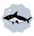 fun cartoon shark vector image