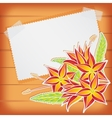 Greeting card with scotch tape and flowers vector image