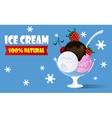Ice cream watered chocolate sauce vector image vector image