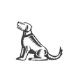 Welsh Terrier Sitting Woodcut vector image vector image