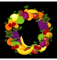 Healthy lifestyle-fruit circle vector image