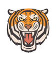 angry tiger image vector image
