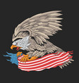 eagle usa army vector image