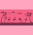 flamingo silhouette birds on beach wildlife and vector image