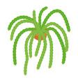 green cactus icon cartoon style vector image vector image