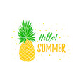 hello summer banner template pineapple bright vector image