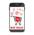 smartphone big sale chart vector image vector image