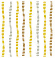vertical dotted decorative stripes seamless vector image vector image