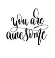 you are awesome - hand lettering inscription text vector image