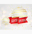 3d style grand open banner template with red vector image