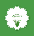 aloe vera essential oil design labels stickers vector image