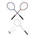 badminton and shuttle vector image vector image