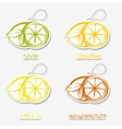 Citrussti sticker Icons vector image vector image