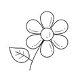 daisy flower line icon vector image