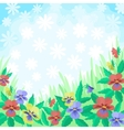 Flowers pansies and sky background vector image