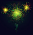 golden green fireworks over night sky holidays vector image vector image