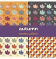 maple leaf seamless patterns set vector image