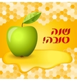 Rosh hashana card - apple and honey vector image