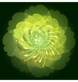 The Flower vector image vector image