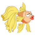 cute cartoon goldfish vector image vector image