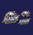 hawk mascot logo design vector image vector image