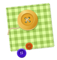 Patch and Buttons vector image vector image