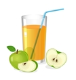 Realistic glass of apple juice drink with cocktail vector image