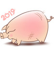 chinese pig year vector image