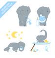cute elephant baby boy celebrating newborn isolate