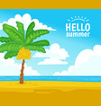 hello summer with banana palm tree on tropical vector image