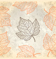 pattern with autumn leaves in beige vector image