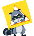 raccoon with a card of geometric shape triangle vector image vector image