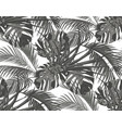 jungle black-and-white leaves of tropical palm vector image