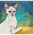 Oriental Shorthair Cat vector image vector image