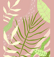 tropical leaves background design vector image