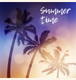 summer time greeting card invitation silhouette vector image