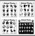 animal tracks - north american animals vector image vector image