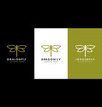 dragonfly logo design line style vector image