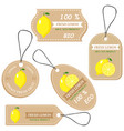 labels with various fruitsfor lemon vector image